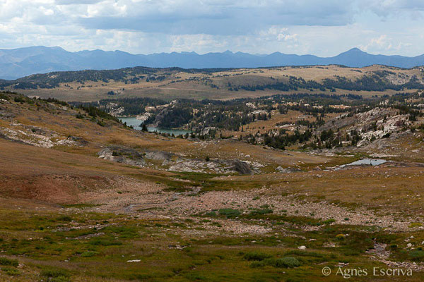 Beartooth highway, Greater Yellowstone
