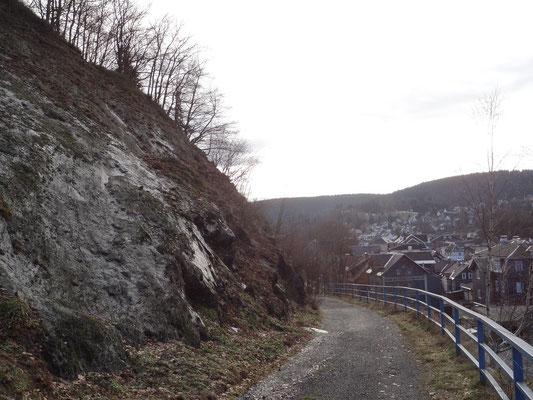 Alter Bahnweg Steinach - Lauscha