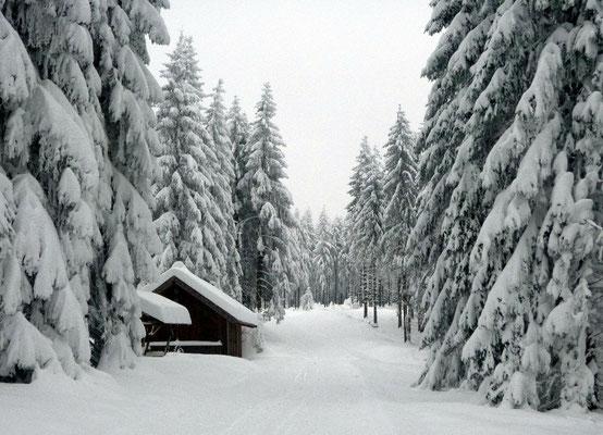 Skihütte Rauenstein (knapp 800m NHN)