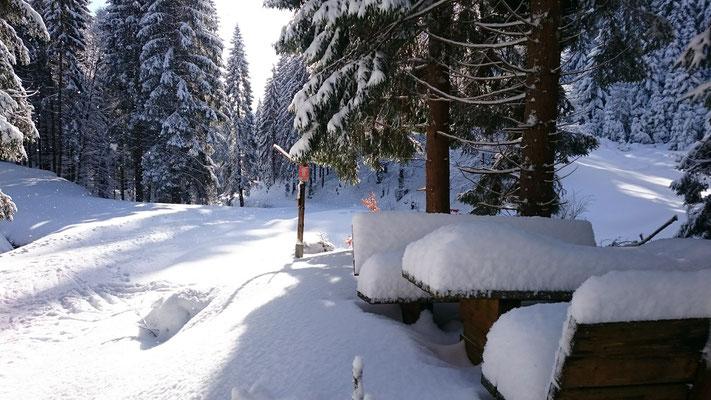 Winter an der Chausseekreuzung