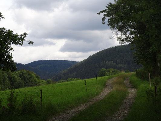 Weg übers Kalkgebirge
