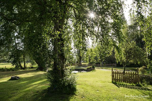 Parc du Moulin du Becquerel à St Martin le Gaillard près de Criel sur Mer 76