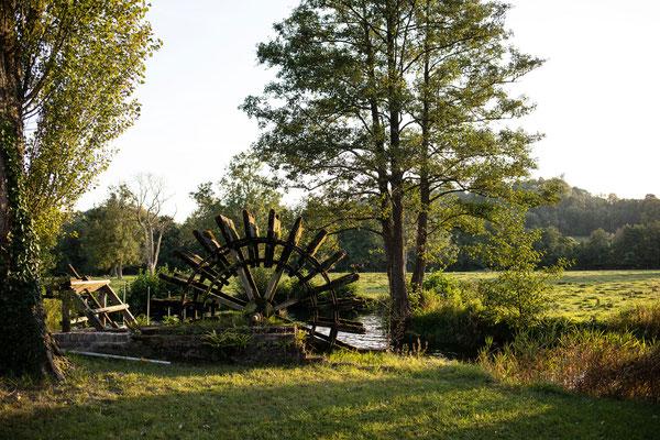 Parc du Moulin du Becquerel à Saint Martin le Gaillard