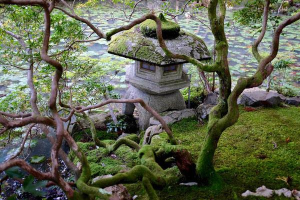 Kyoto Gartenlandschaft Konchi-in Tempel