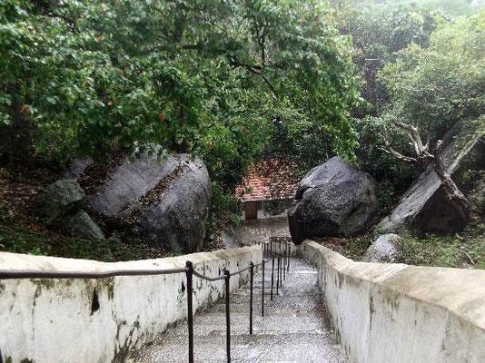 Sri Lanka Felsentempel Mulkirigala bei Tangalle