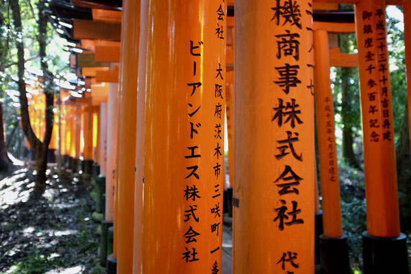 Fushimi Inari-Taisha Reisebericht Kyoto Ausflugstipps Reiseblog