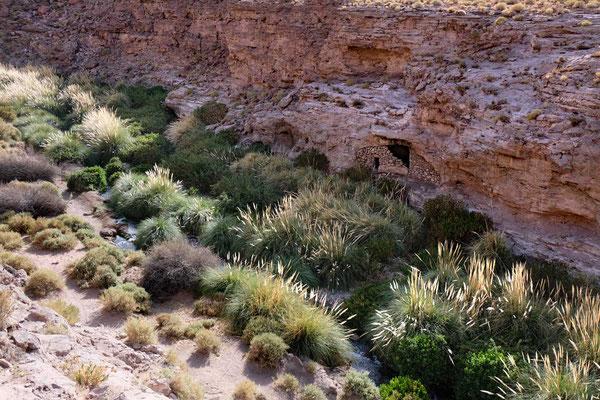 uritama Schlucht Wanderung in der Atacama