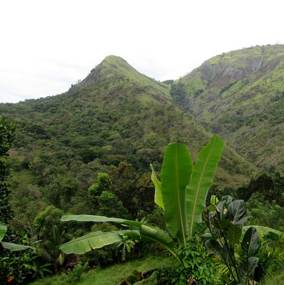 Wanderung bei Belihuloya mit Blick auf Horton Plains, Sri Lanka