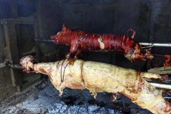 Spanferkel oder Schaf vom Grill an den Strassen der Insel Pag