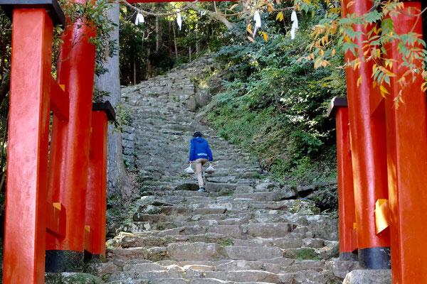 Aufstieg zum Kamikura-Jinja Schrein