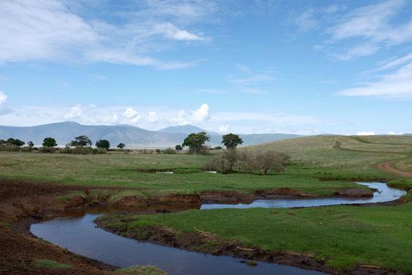Landschaft im Ngorongoro Krater
