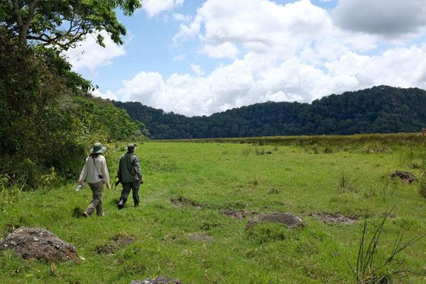 Ngurdoto Krater Wanderung – Arusha Nationalpark