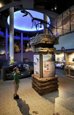 Draper Natural History Museum Cody