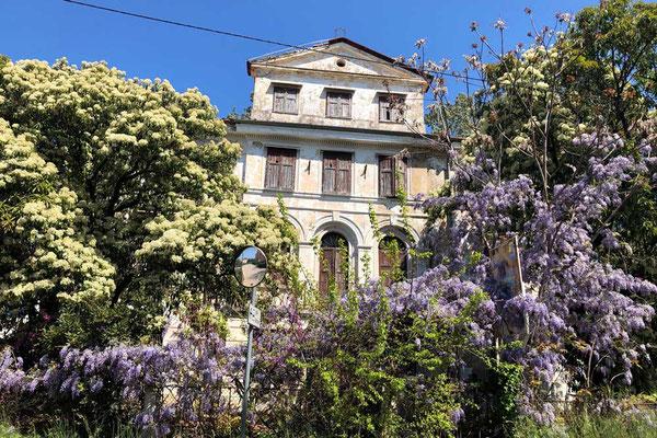 Altes Haus in Savudrija, Istrien