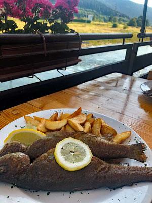 Gackan Forelle Restaurant Bistro Ribič