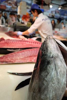 Japans Thunfischzucht aus Wakayama