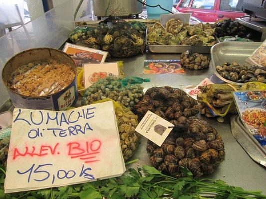 Muscheln und Sardellen in Salz, Markt La Spezia Mercato