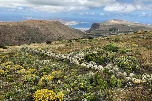 Blick auf das Famara-Kliff, unserer zweite Wanderung