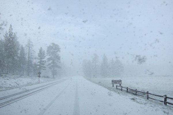 Schneesturm im Bryce Canyon