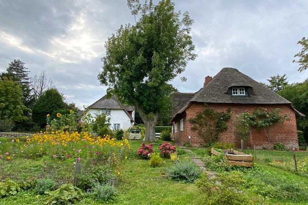 Häuser und Gärten Dorf Keitum Sylt