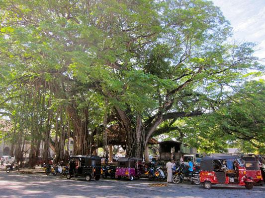 Galle City sights Sri Lanka