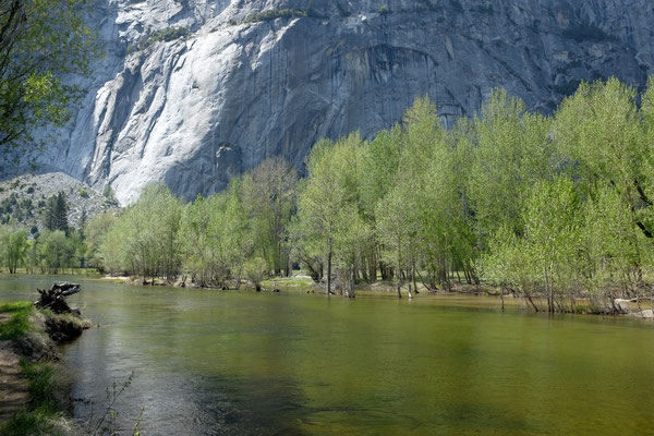 Merced River Yosemite National Park USA Kalifornien