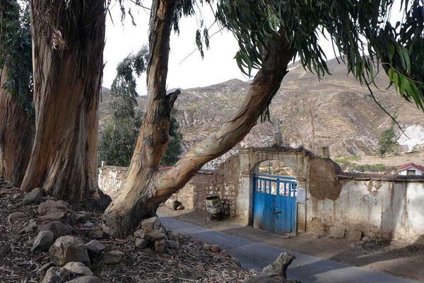 Friedhof von Socoroma bei Putre