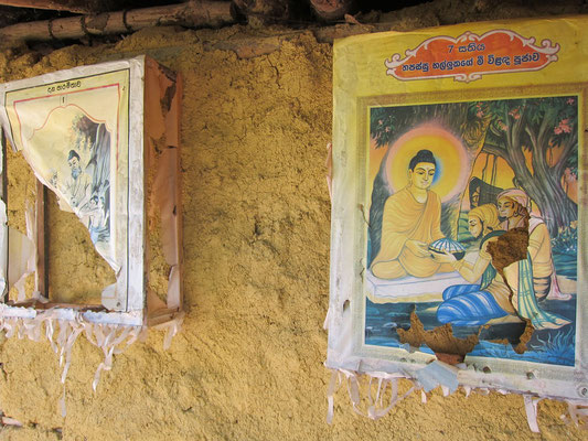 Madu Ganga River Tour Sri Lanka