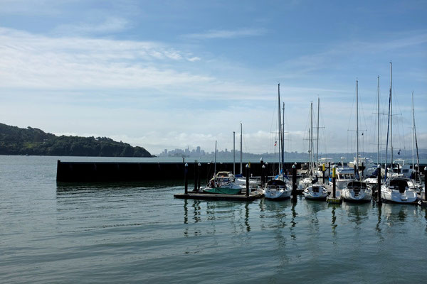 Yachthafen in Tiburon mit San Francisco Skyline
