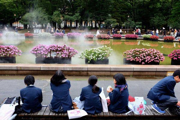 Schüler machen Pause Ueno Park Tokio