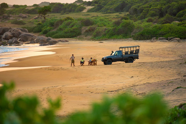 Chena Huts Safari Yala Nationalpark Sri Lanka
