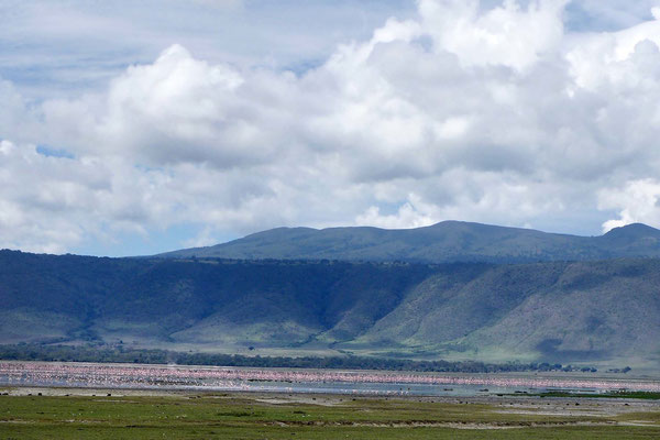 Der Natronsee mit Pink-Flamingos im Ngorongoro Krater