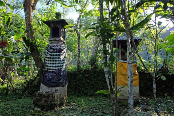 Wanderung durch die Munduk Moding Plantation Bali