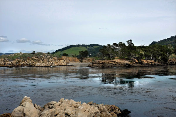 Point Lobos State Reserve, Whalers Cove