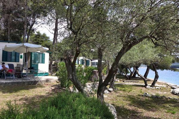 Cres Camp Kovacine Mobilheime in Bestlage