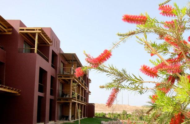 Mövenpick Tala Bay Aqaba, Jordanien