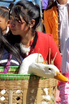 Volle Einkaufskörbe auf dem Shaxi Freitag-Markt