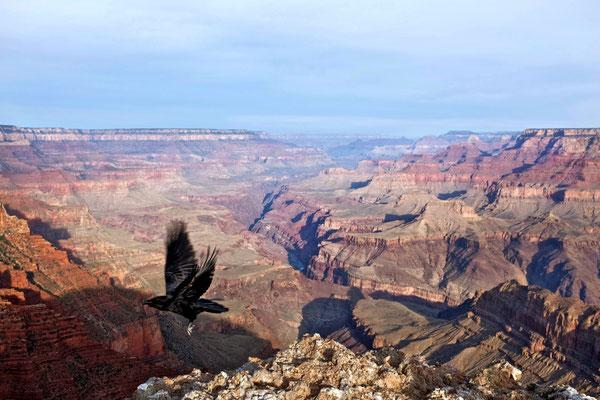 Sunrise Grand Canyon Viewpoints am Desert View Drive