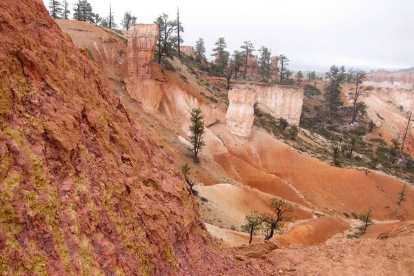 Bryce Canyon, Queens Garden-Navajo Loop Trail Wanderung