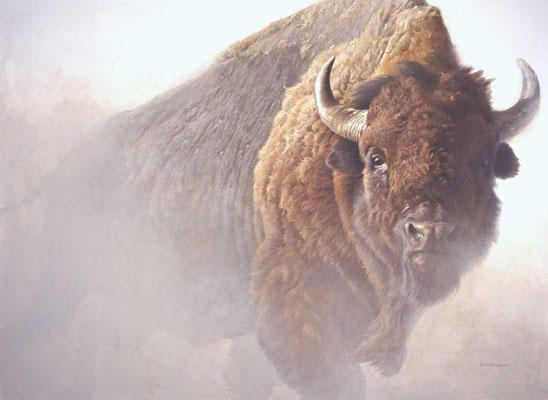 Bison Gemälde Robert Bateman, National Museum of Wildlife Art in Jackson