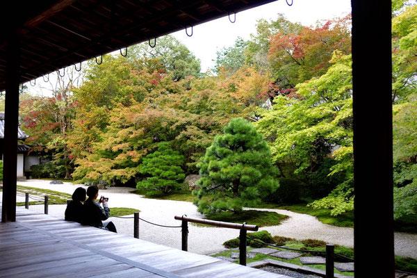 Berühmter Kyoto Steingarten von Konchi-in