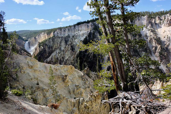 Artist Point mit Yellowstone Wasserfall