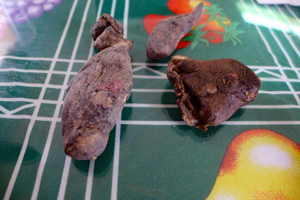 Chuño, gefriergetrocknete Kartoffeln aus dem Altiplano
