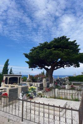 Hoch über der Altstadt liegt der Friedhof von Primosten