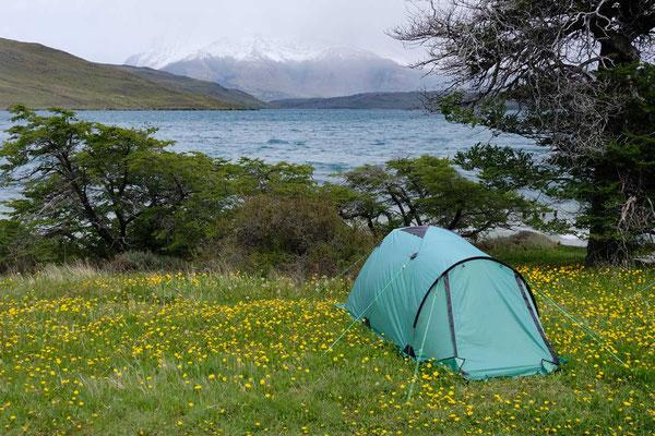 Camping am Laguna Azul Torres del Paine