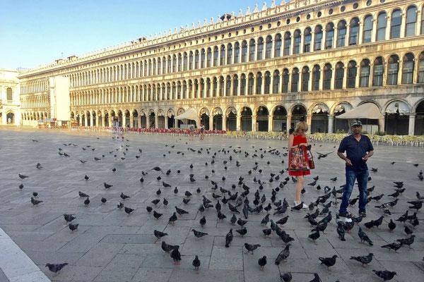 Venedig Piazza San Marco morgens um 7 Uhr