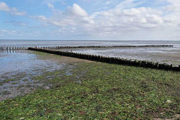 Wattenmeer von Kampen Sylt