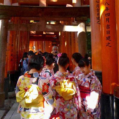 Viele junge Japanerinnen tragen den Kimono – Fushimi Inari Schrein, Kyoto