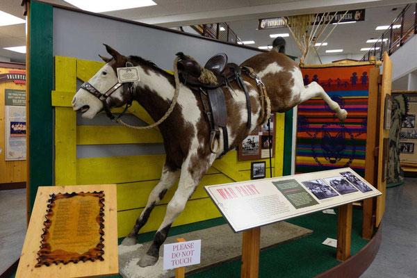 Die gefürchtete War Paint Stute, Rodeo Museum Pendleton