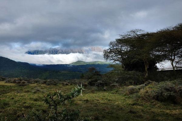 Ausblick von der Hatari Lodge auf die  Momella-Lichtung